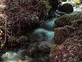 2013-04-01 14-21-25-cascade.jpg