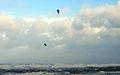 2013-12-06 Orkan Xaver in Warnemünde 07.jpg