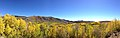 2014-10-04 13 19 23 Panorama of Aspens during autumn leaf coloration from Charleston-Jarbidge Road (Elko County Route 748) in Copper Basin about 7.8 miles north of Charleston, Nevada.jpg