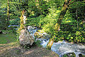 2014 Nowy Aton, Historyczny szlak w kanionie rzeki Psyrccha (09).jpg
