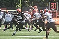 2016 Cleveland Browns Training Camp (28614575151).jpg