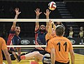 2016 Invictus Games, US Team advances to gold medal Sitting volleyball 160511-D-BB251-015.jpg