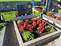2017-09-14 (122) 2017-09-14 Friedhof St. Gotthard.jpg