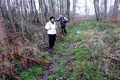 2018-12-22-December-watercolors.-Hike-to-the-Ratingen-forest. File-23.png