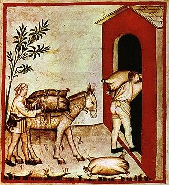 Olive - Storing olives on Dere Street; Tacuinum Sanitatis, 14th century,