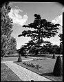 24.06.1964. Vue de la propriété. (1964) - 53Fi4706.jpg