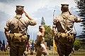 3rd Radio Battalion Change of Command Ceremony 2015 150622-M-QH615-086.jpg