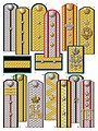 4. Civil officials shoulder boards (M.1897).jpg