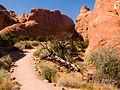 57 Devils Garden Trail 36 (4119923084).jpg