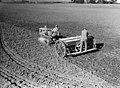7270 Canterbury Agricultural College farm.jpg