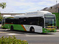 ACTION bus 352.jpg
