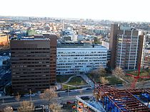 AECOM Buildings.JPG