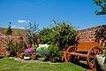 A garden near Scarborough-11 (4629725978).jpg