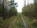 A private track near Low Rest Park Farm - geograph.org.uk - 2153668.jpg