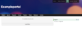 Accelo Client Portal.png
