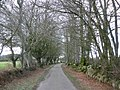 Access road, to Devon and Somerset Gliding Club - geograph.org.uk - 1776495.jpg