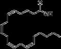 Acido arachidonico.png