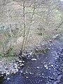 Afon Lwyd, near Abersychan - geograph.org.uk - 399348.jpg