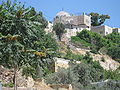 Al Aqsa IMG 4897.JPG