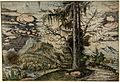 Albrecht Altdorfer - Landscape with a Double Spruce (hand-coloured) Albertina DG1926-1782.jpg