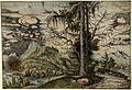Albrecht Altdorfer - Landscape with a Double Spruce (hand-coloured) Albertina DG1926-1782.jpg