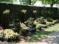 Algemene begraafplaats Jacobshof in Deurne met graven familie Van Doorne.jpg