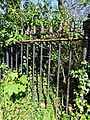 All Hallows Church Tottenham London England - churchyard overgrown tomb fence 2.jpg