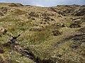Allt a' Chnoic Ghlais - geograph.org.uk - 1247503.jpg