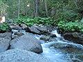 Along E Fork of N Fork of American River - panoramio.jpg