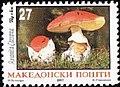 Amanita caesarea, Stamp of Macedonia.jpg
