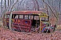 Ancient School Bus-2 (85604515).jpg