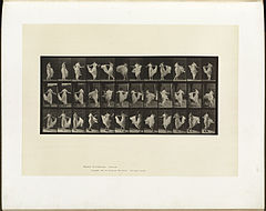 Animal locomotion. Plate 192 (Boston Public Library).jpg