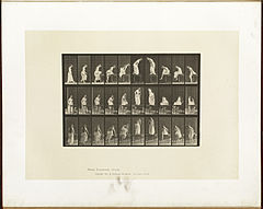 Animal locomotion. Plate 513 (Boston Public Library).jpg
