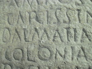 History of Dalmatia - Name Dalmatia on ancient panel