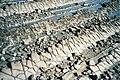 Aoshima Oni no Sentaku ita 200408.jpg