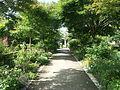 Arboretum Gaston Allard 9.JPG