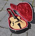 Archtop-jazz-blues-guitar.JPG