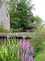 Ashton Keynes, Thames Headwater - geograph.org.uk - 1422271.jpg