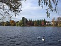 Autumn colour across the lake, Roath Park, Cardiff - geograph.org.uk - 1036835.jpg