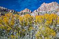 Autumn colours in SW Utah - Hwy 62 in Otter Creek Canyon, Utah (15468368200).jpg
