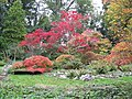 Autumn foliage at The Weir Gardens - geograph.org.uk - 1421699.jpg