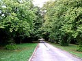 Avenue to Weston Mead Farm - geograph.org.uk - 243175.jpg
