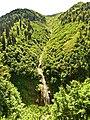 Ayder Yaylasi - panoramio.jpg