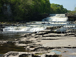 Aysgarth Falls - The Lower Falls from the riverside