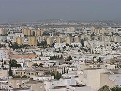 Vue sur El Menzah et la lointaine banlieue nord