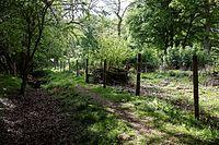 Barbed wire fence Hatfield Forest Essex England 2.jpg