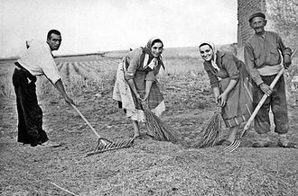 Threshing board - Sweeping the threshing floor in order to pile up the seed
