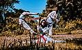 Basic Taekwondo.jpg