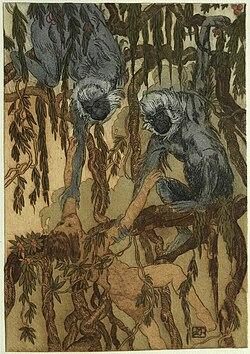 Becque - Livre de la jungle, p48