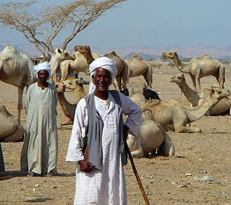 Demographics of Africa - Beja nomads from Northeast Africa